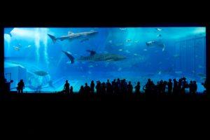 types of vivarium, oceanarium