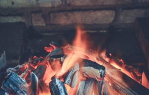 bbq and fire pit charcoal for terrarium