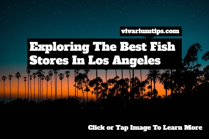 fish stores in los angeles
