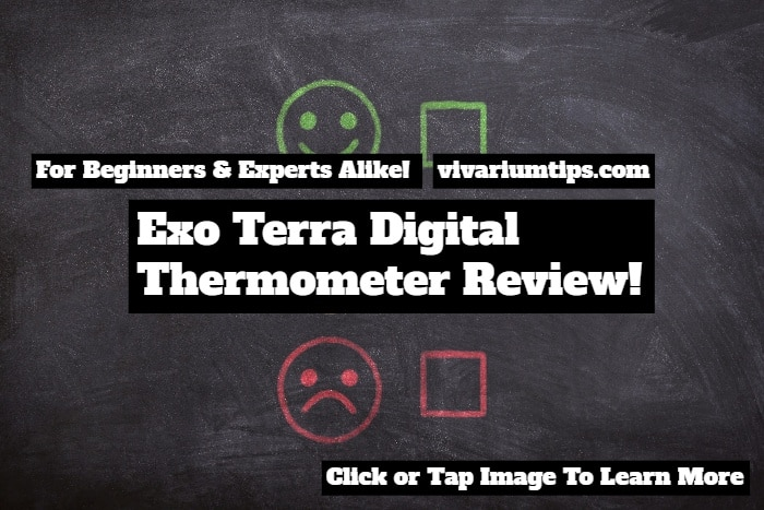 exo terra digital thermometer review