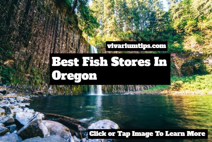 fish stores in oregon