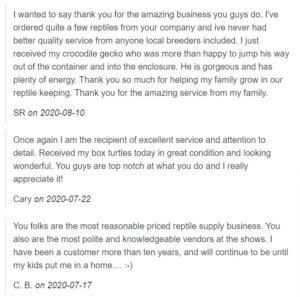 lllreptile reviews