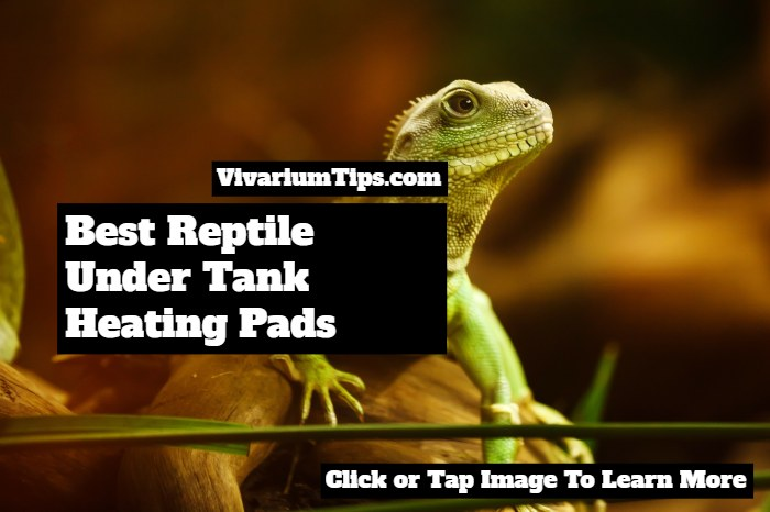 best reptile under tank heating pads