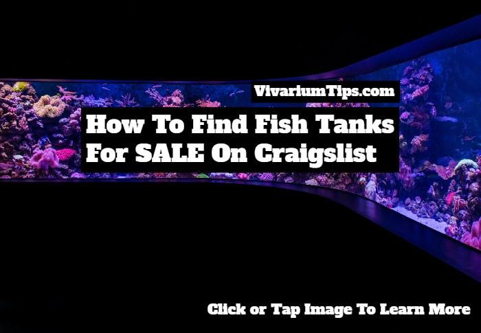 fish tank for sale craigslist